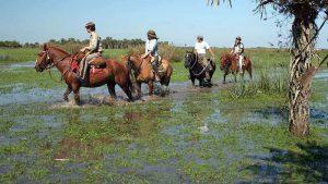 Cabalgata Esteros del Iberá